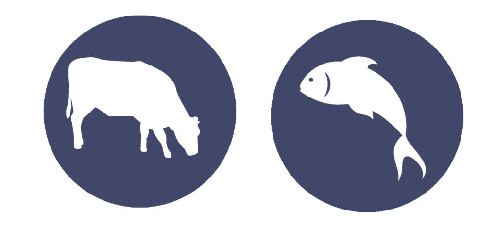 kráva+ryba