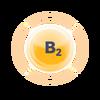 Kopie návrhu B (3)