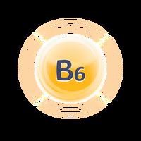 PICT-VIT-B6