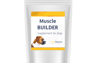 Muscle Builder - muscles for your dog!